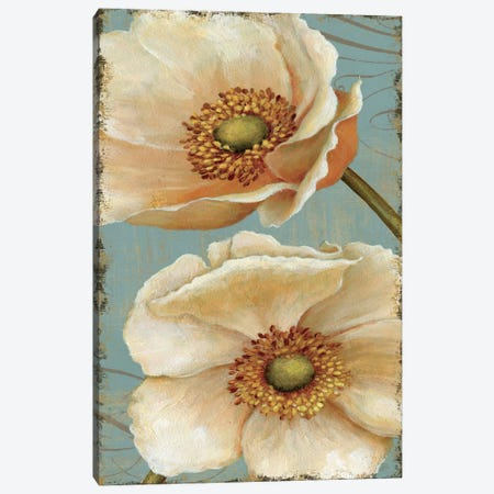 Windflower III Canvas Print #WAC279} by Daphne Brissonnet Canvas Print