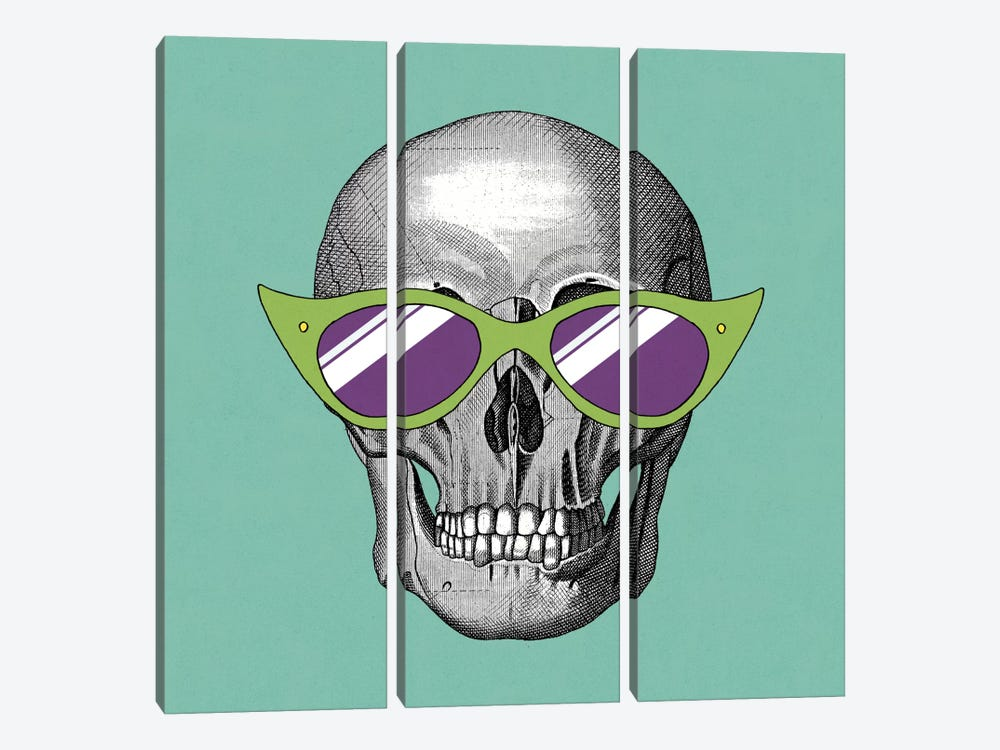 Sunny Skull II 3-piece Canvas Wall Art