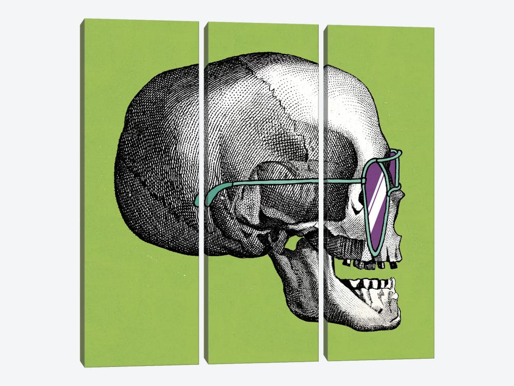 Sunny Skull III by Elyse DeNeige 3-piece Canvas Art Print
