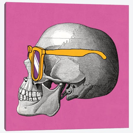 Sunny Skull IV Canvas Print #WAC2803} by Elyse DeNeige Canvas Art Print