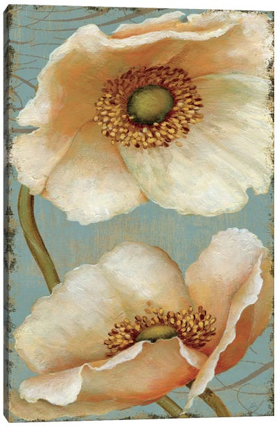Windflower IV Canvas Print #WAC280
