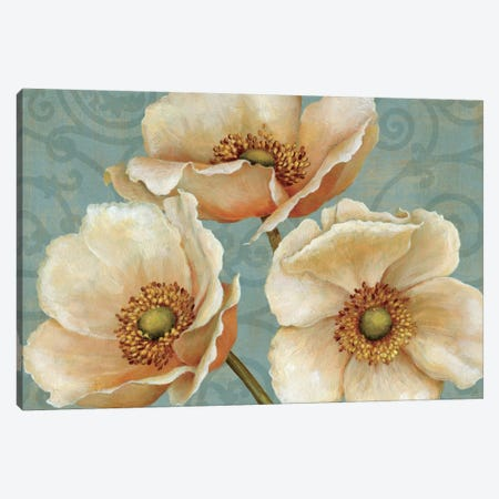 Windflower  Canvas Print #WAC281} by Daphne Brissonnet Canvas Art