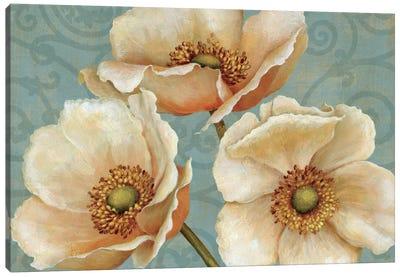 Windflower  Canvas Print #WAC281