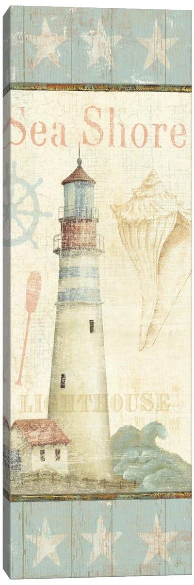 Coastal Shells I  Canvas Print #WAC282