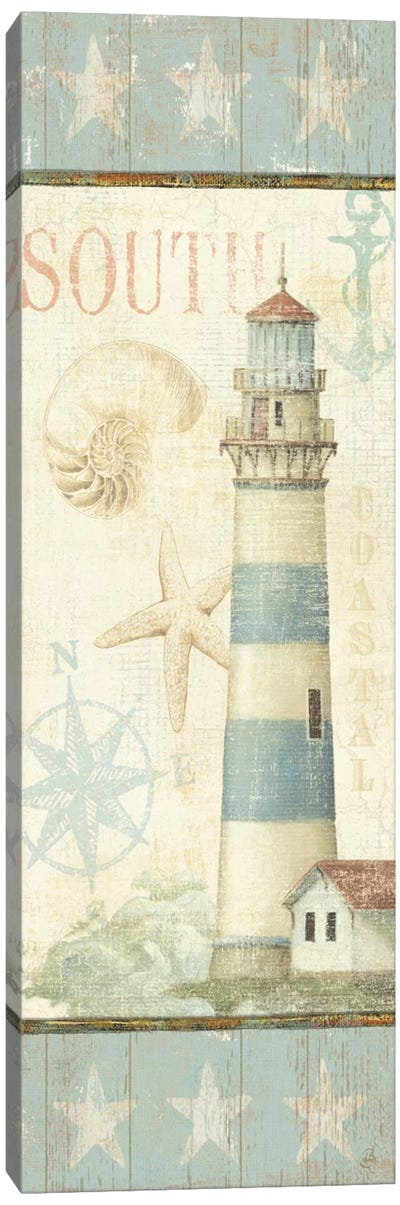 Coastal Shells II  Canvas Print #WAC283