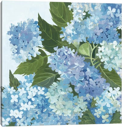 Decorative Hydrangea I Canvas Art Print