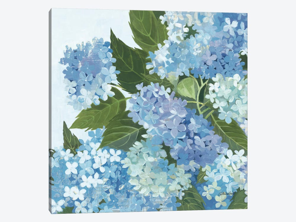 Decorative Hydrangea I by Kathrine Lovell 1-piece Canvas Art Print