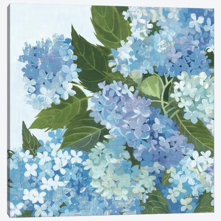 Decorative Hydrangea I Canvas Print #WAC2866} by Kathrine Lovell Canvas Art