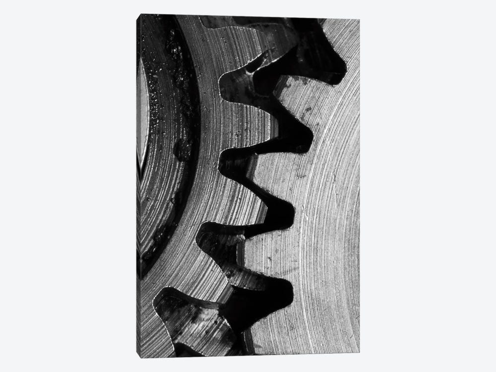 Interlocked III 1-piece Canvas Art