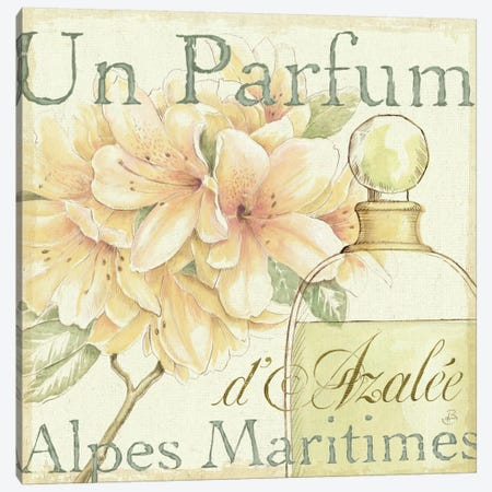 Fleurs and Parfum III Canvas Print #WAC292} by Daphne Brissonnet Art Print