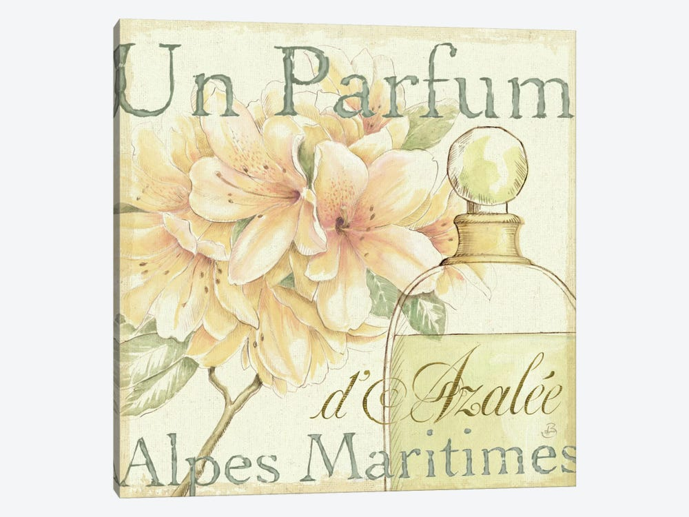 Fleurs and Parfum III by Daphne Brissonnet 1-piece Canvas Wall Art