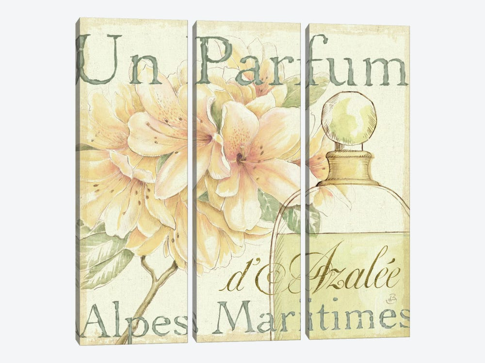 Fleurs and Parfum III by Daphne Brissonnet 3-piece Canvas Art
