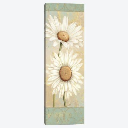 Beautiful Daisies I  Canvas Print #WAC298} by Daphne Brissonnet Canvas Print