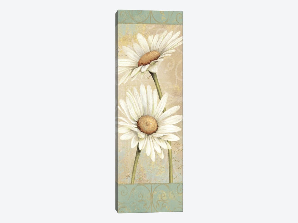 Beautiful Daisies II by Daphne Brissonnet 1-piece Canvas Art Print