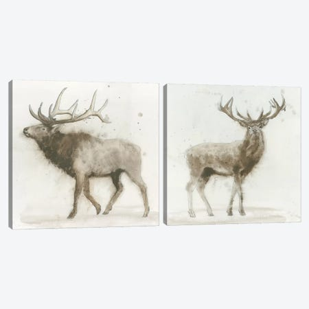 Stag Diptych Canvas Print Set #WAC2HSET026} by James Wiens Canvas Art Print