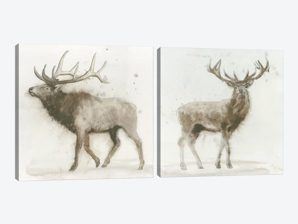 Stag Diptych by James Wiens 2-piece Canvas Art Print
