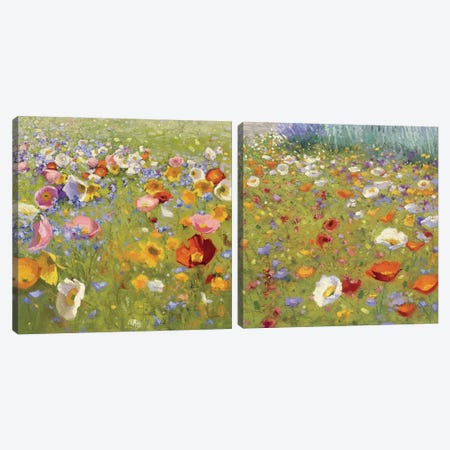 Champ De Fleur Diptych Canvas Print Set #WAC2HSET054} by Shirley Novak Canvas Art