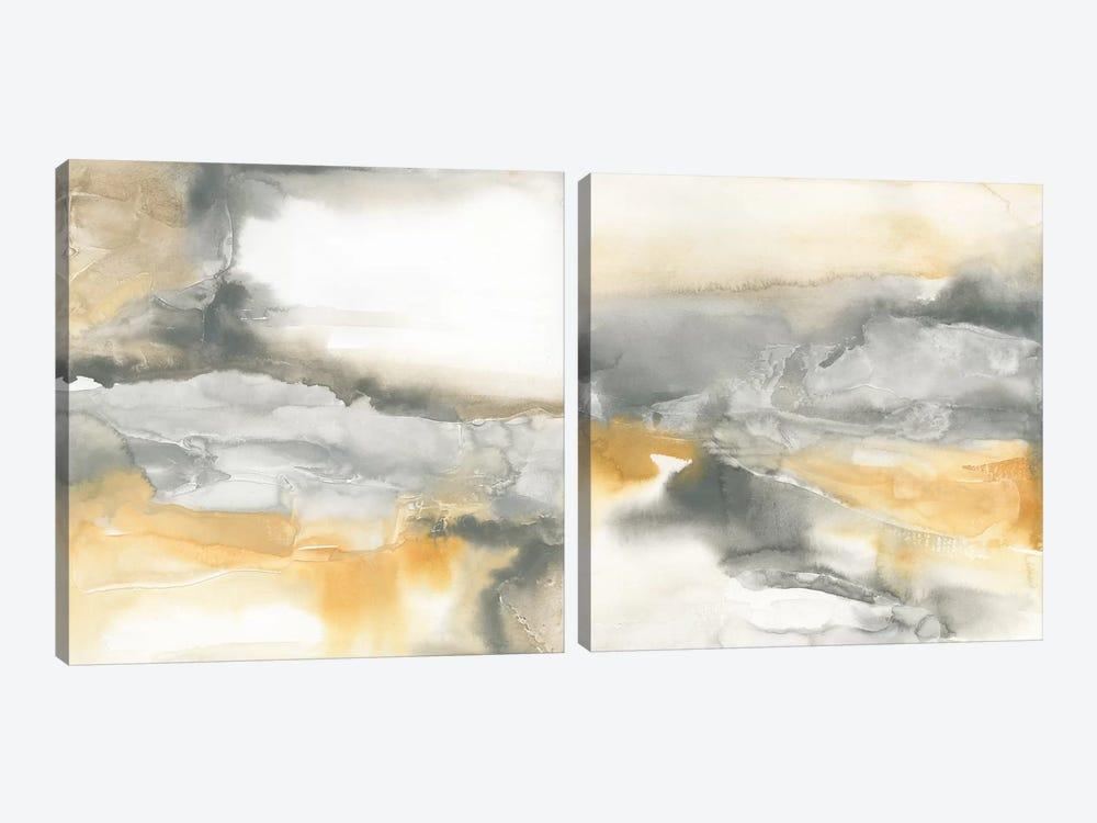 Minerals Diptych by Chris Paschke 2-piece Canvas Art