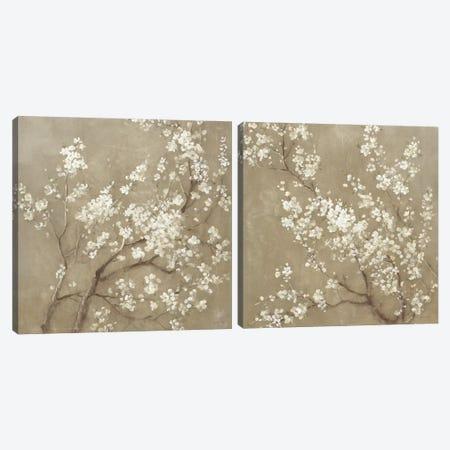 White Cherry Blossoms Diptych Canvas Print Set #WAC2HSET085} by Danhui Nai Canvas Art Print