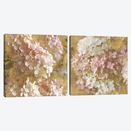 Gilded Hydrangea Diptych Canvas Print Set #WAC2HSET098} by All That Glitters Art Print