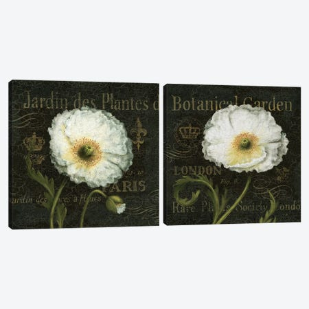 Botanical Gardens Diptych Canvas Print Set #WAC2HSET103} by Daphne Brissonnet Art Print