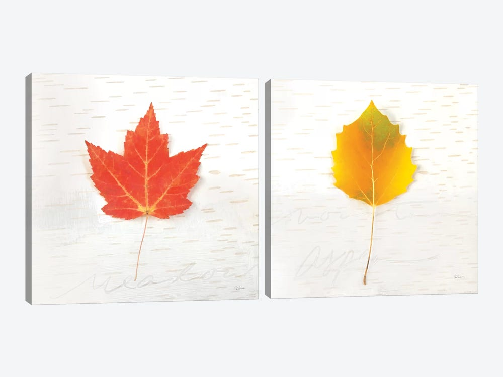 Autumn Colors Diptych I by Sue Schlabach 2-piece Canvas Art Print