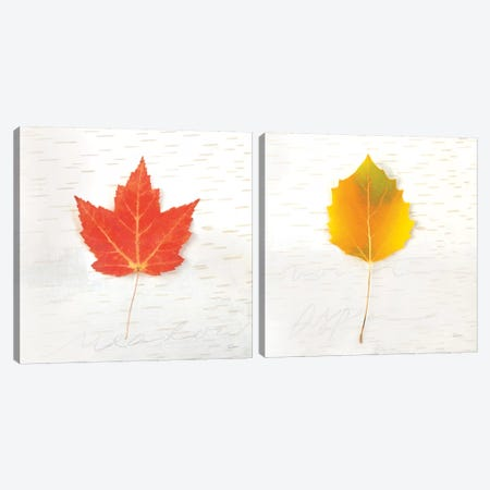 Autumn Colors Diptych I Canvas Print Set #WAC2HSET136} by Sue Schlabach Canvas Print