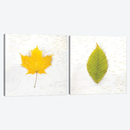 Autumn Colors Diptych II Canvas Print Set #WAC2HSET137} by Sue Schlabach Canvas Print