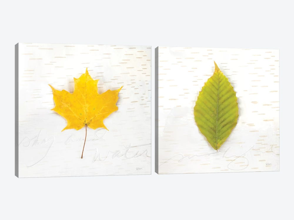 Autumn Colors Diptych II by Sue Schlabach 2-piece Canvas Artwork