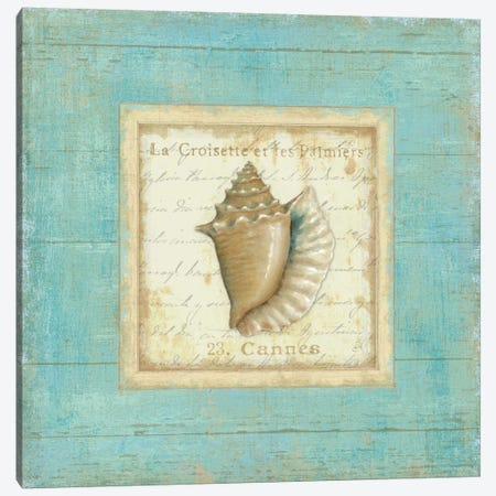 Bijou de Mer I  Canvas Print #WAC302} by Daphne Brissonnet Canvas Print