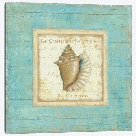 Bijou de Mer I  Canvas Print #WAC302} by Daphne Brissonnet Canvas Print