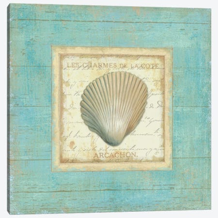 Bijou de Mer III  Canvas Print #WAC304} by Daphne Brissonnet Canvas Wall Art