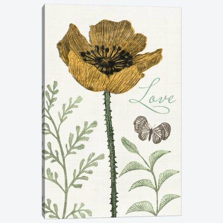 Springtime II Canvas Print #WAC3130} by Sara Zieve Miller Canvas Artwork