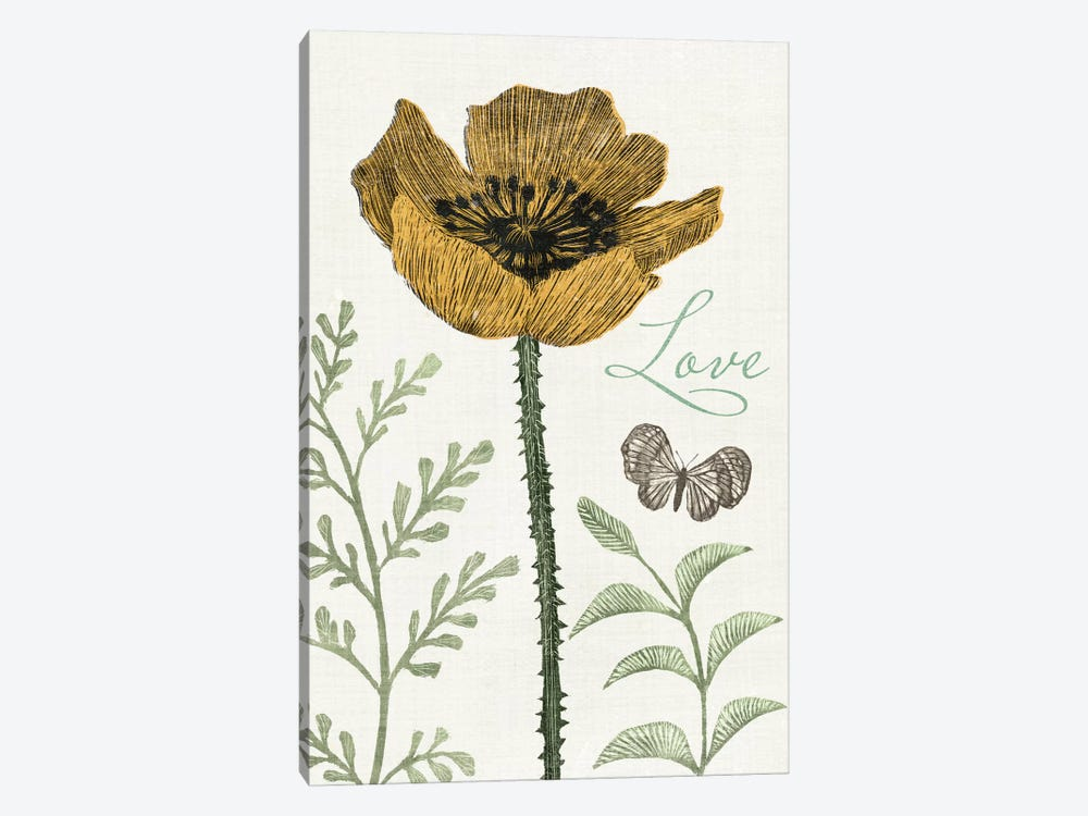 Springtime II by Sara Zieve Miller 1-piece Canvas Art