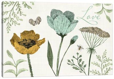 Springtime IV Canvas Art Print