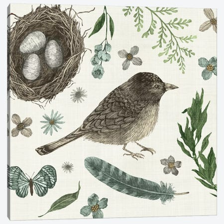 Springtime Nest I Canvas Print #WAC3133} by Sara Zieve Miller Canvas Artwork