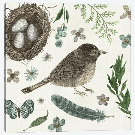 Springtime Nest I Canvas Print #WAC3133} by Sara Zieve Miller Canvas Artwork