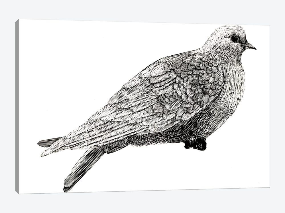 Peace And Joy Dove Element by Sara Zieve Miller 1-piece Art Print