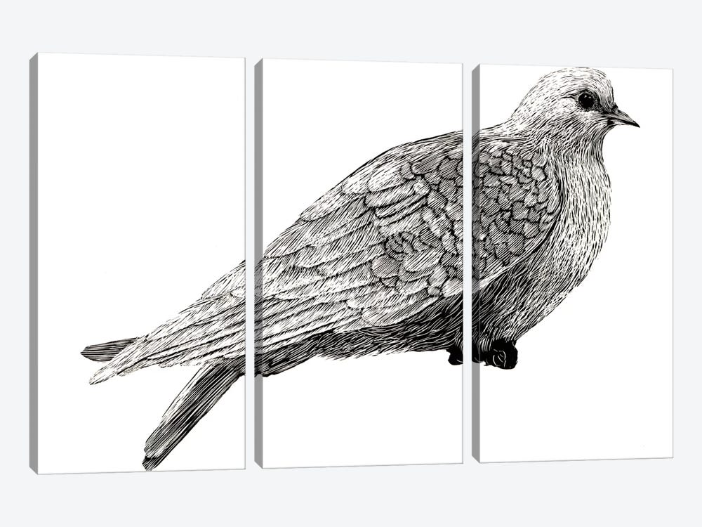 Peace And Joy Dove Element by Sara Zieve Miller 3-piece Art Print