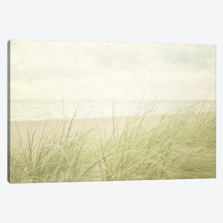 Beach Grass II Canvas Print #WAC3163} by Elizabeth Urquhart Art Print