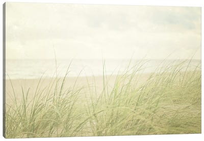 Beach Grass II Canvas Art Print