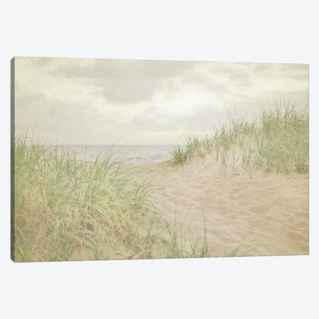 Beach Grass III Canvas Print #WAC3164} by Elizabeth Urquhart Canvas Artwork