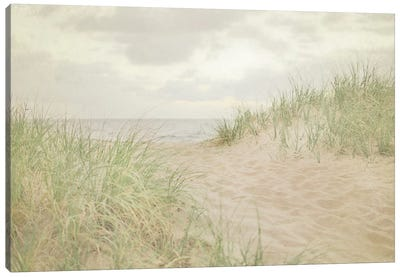 Beach Grass III Canvas Art Print