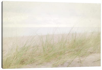 Beach Grass IV Canvas Art Print