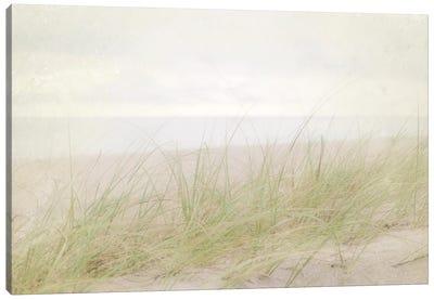 Beach Grass IV Canvas Art Print