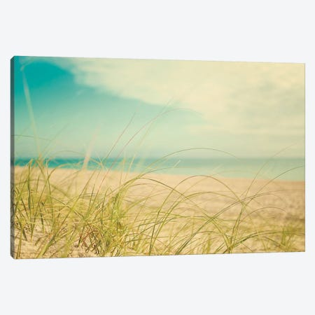 Beach Grass V Canvas Print #WAC3166} by Elizabeth Urquhart Canvas Wall Art