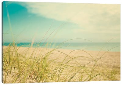 Beach Grass V Canvas Art Print