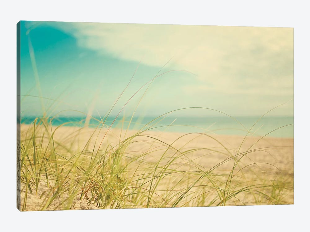 Beach Grass V by Elizabeth Urquhart 1-piece Art Print
