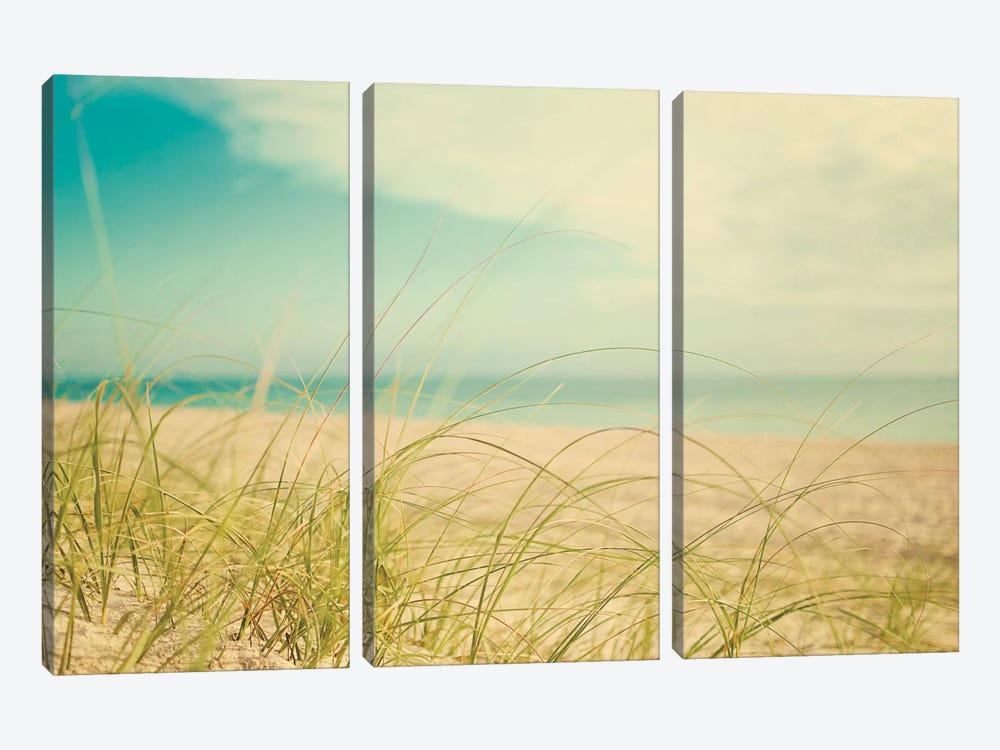 Beach Grass V by Elizabeth Urquhart 3-piece Art Print