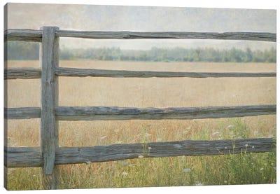 Edge of the Field Canvas Art Print